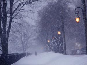 Метели и снежные заносы ждут нас завтра