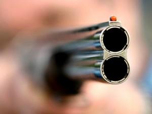 На улице Дружбы стреляли из ружья