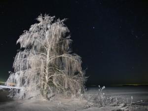 До -30 градусов в Челябинской области обещают синоптики. И холода задержатся!