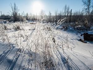 Аномальные холода грядут на Южном Урале