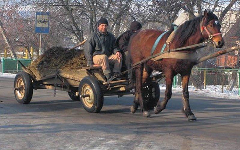 В Брянске цыган не довез до дома краденые паласы