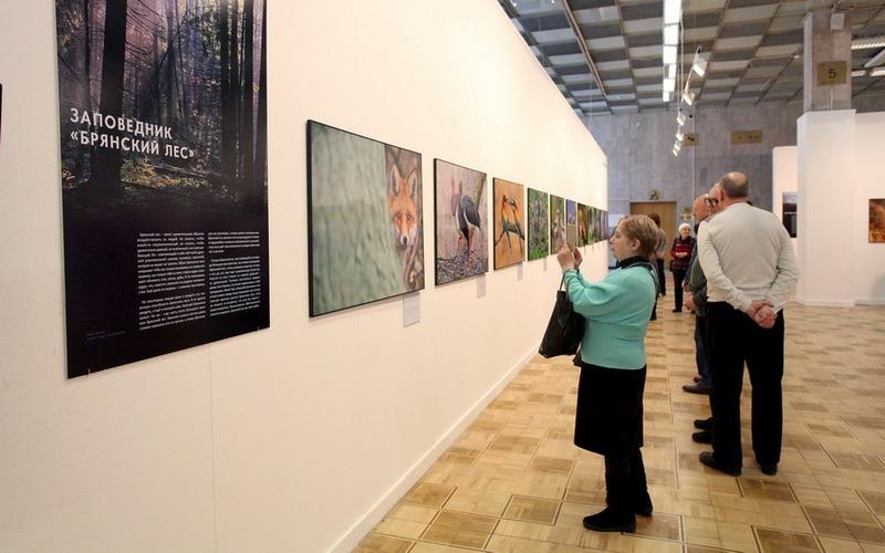 Российскую публику познакомили с обитателями «Брянского леса»