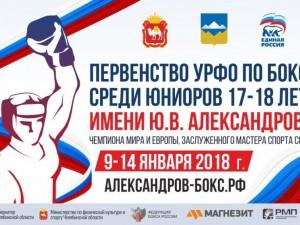 Южноуральцы взяли 14 медалей на первенстве Уральского федерального округа по боксу