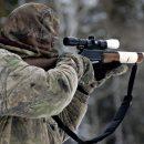 Брянцев призвали сдавать браконьеров
