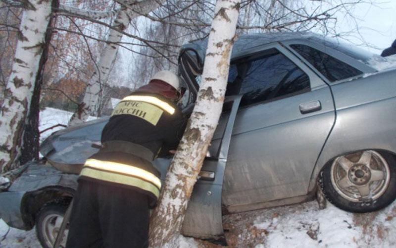После встречи сдеревом набрянской трассе автоледи оказалась вбольнице