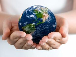 Министерство экологии раздает гранты на волонтерские проекты