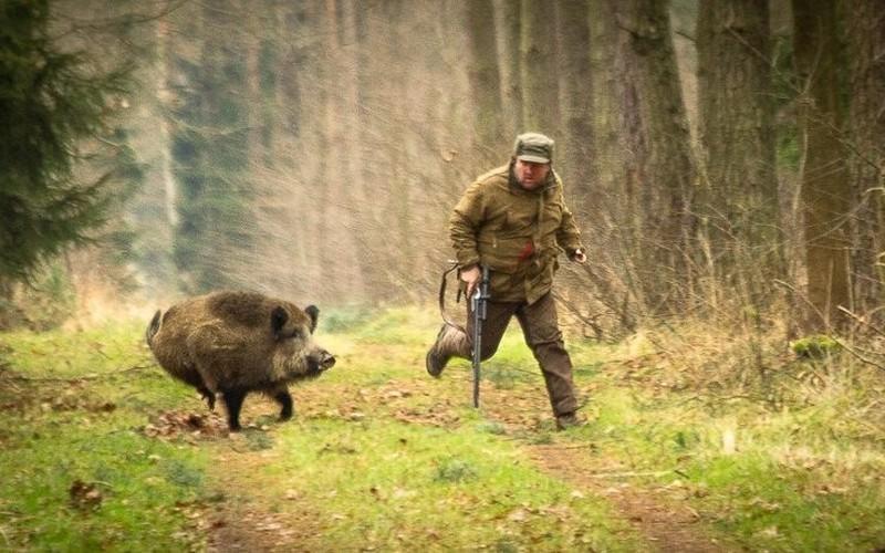 Брянских браконьеров решили убить штрафами
