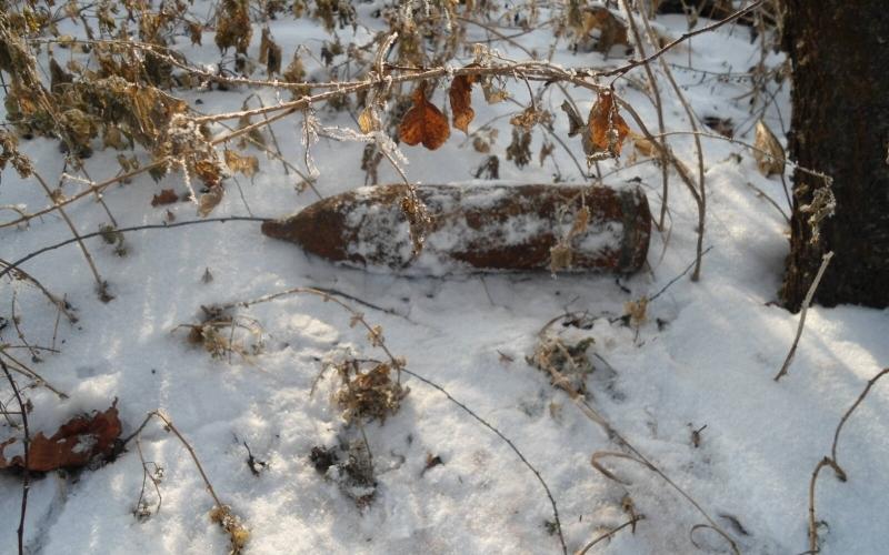 На окраине Жуковки нашли два артснаряда
