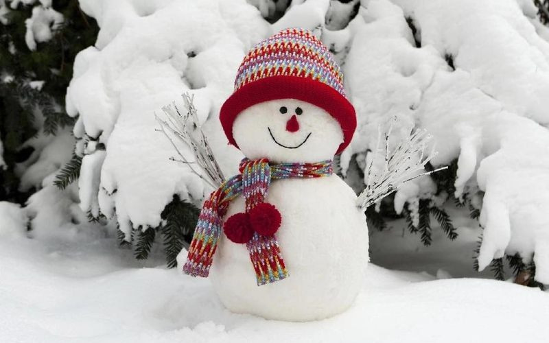В Брянске объявили о предстоящем фестивале «Снеговик 2018»