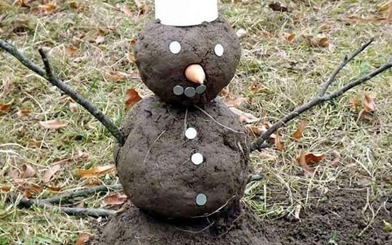 Фейковый снег: настоящей зимы вБрянске пока непредвидится