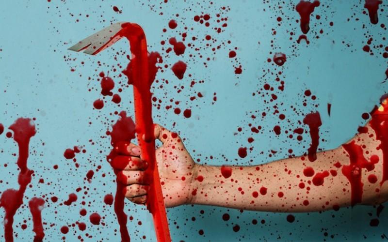 В рогнединской деревне мужчина убил гостя монтировкой