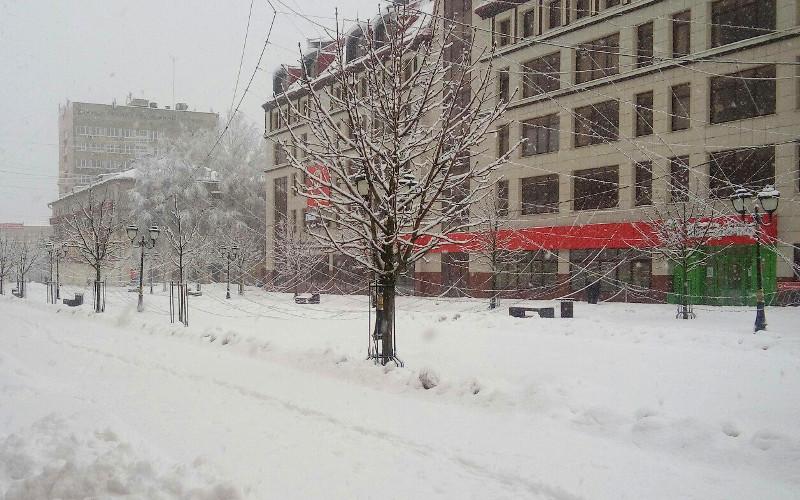 На бульваре Гагарина в Брянске замерзшая гирлянда провисла под тяжестью льда
