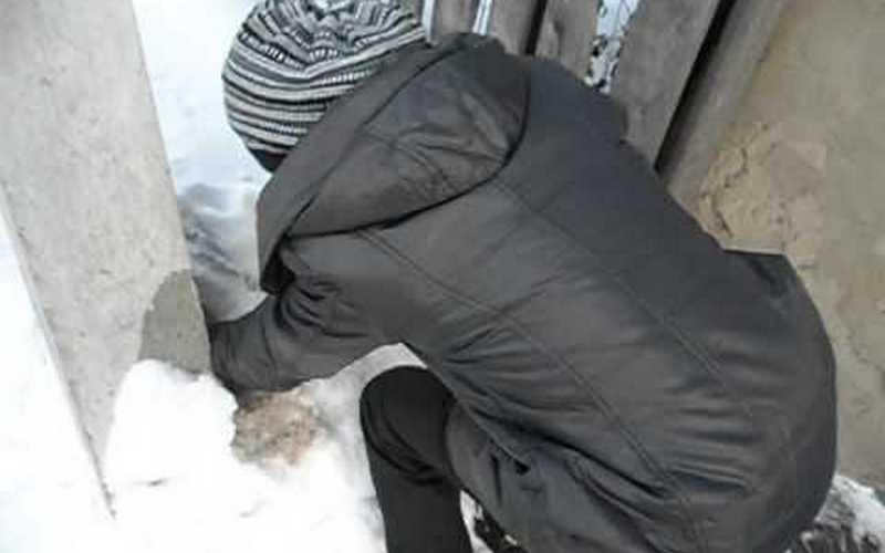 Бизнес брянских наркоторговцев потерпел крах в Пензе