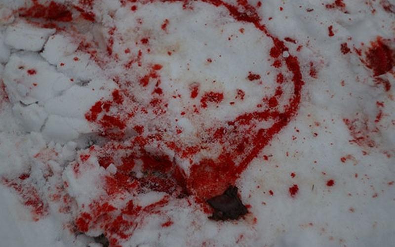 Возле жуковского кафе жестоко избили человека