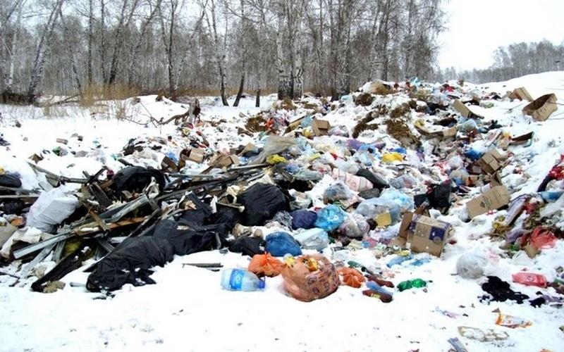 Суд велел чиновникам убрать мусорные завалы вБрянске