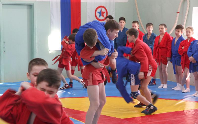 Две школы в Брянске стали первыми в регионе по реализации проекта «Самбо в школу»