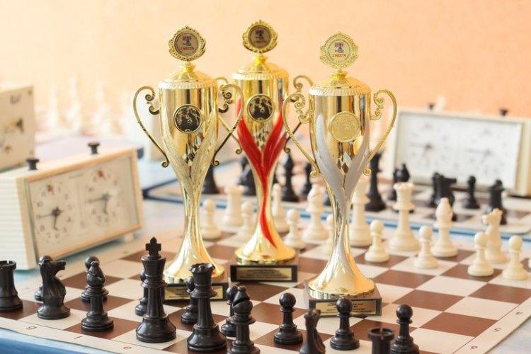 Брянцы заняли призовые места начемпионате России побыстрым шахматам иблицу