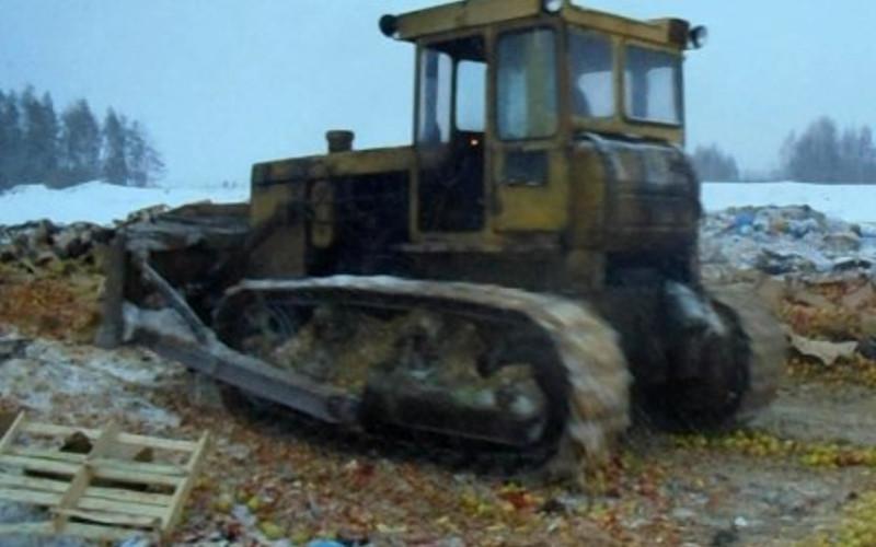 В Брянской области под бульдозер пошли двенадцать тонн санкционных яблок