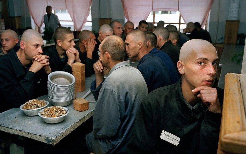 Права заключенных в Брянской области нарушали 900 раз