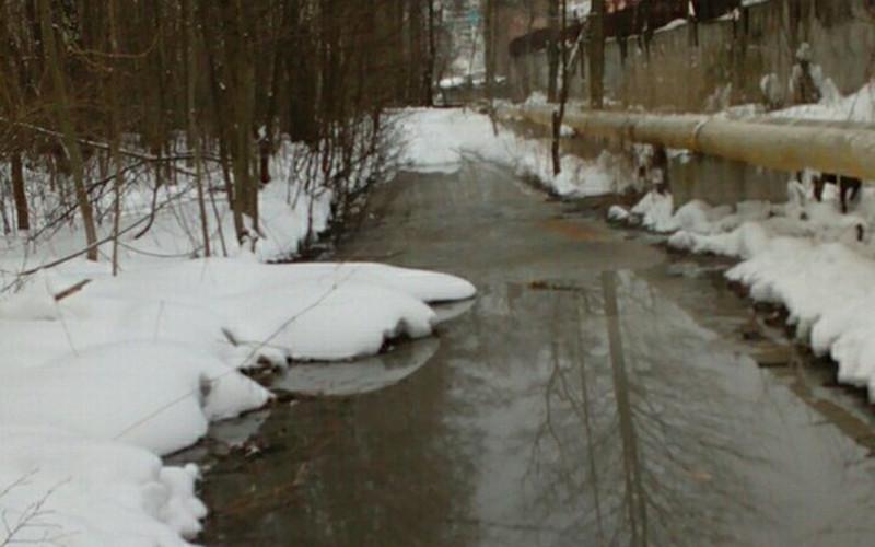 Окраина Бежицы утонула в вонючей канализационной жиже