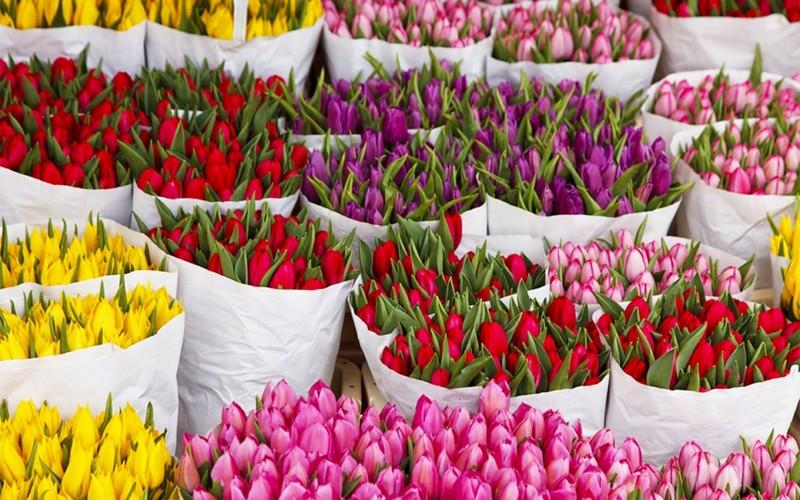 В Брянске назвали адреса цветочных базаров
