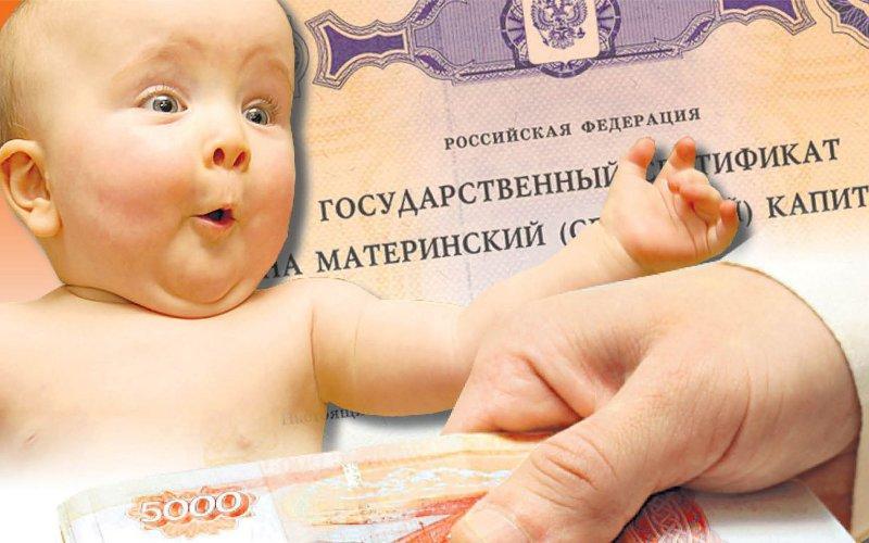 Как тысячи брянских семей распорядилисьматеринским капиталом?