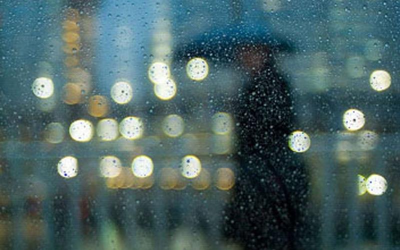 8 марта принесет на Брянщину морось и туман