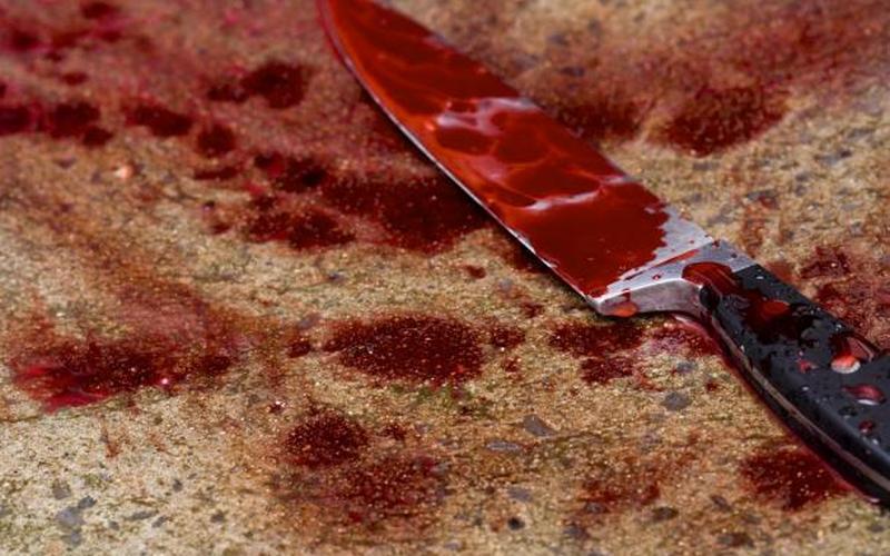 Жительница Брянска проведет в колонии девять лет за жестокое убийство сожителя