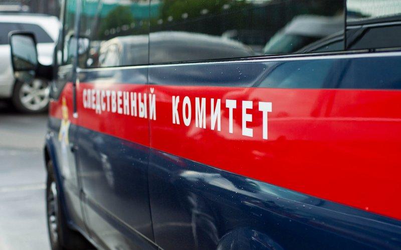 ВБрянской области пофакту гибели четырехлетнего мальчика возбудили уголовное дело