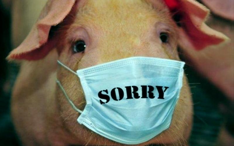 Магазины Новозыбкова чистили отлевой свинины