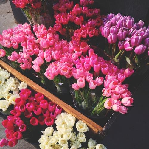 В Брянской области активно развивается цветочный бизнес