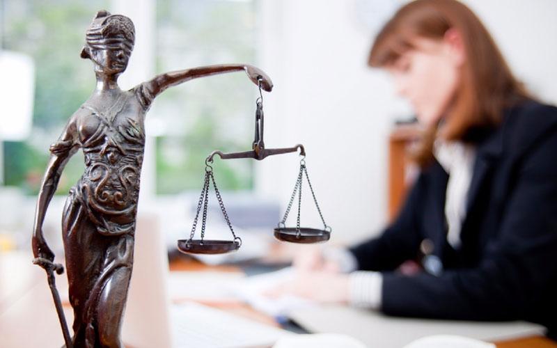 Брянские многодетные семьи 16 и27апреля бесплатно получат юридическую помощь