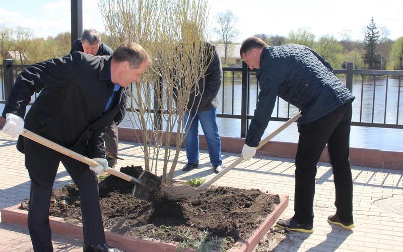 Хлиманков и Макаров посадили ивы на набережной в Брянске
