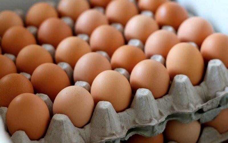 Брянскому торговцу вернули 720 яиц