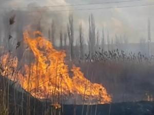 На южном въезде в Челябинск вспыхнули поля сухостоя