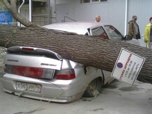 Ураганный ветер в Челябинске роняет деревья и поднимает в воздух все вокруг