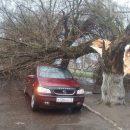 Разбитые машины исорванные крыши— последствия урагана вБрянске