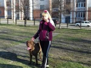 Собак без намордников выгуливала в школьном дворе