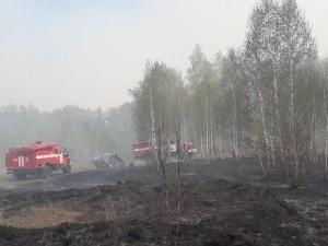 В 270 раз занижена официальная статистика по площади лесных пожаров в Челябинской области