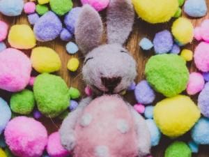 Счастье челябинцев  в радужных цветах