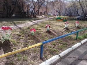 Большие грибы выросли на детской площадке в Челябинске