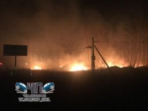 12 тысяч гектар леса сгорели в Челябинской области