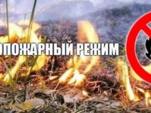 Шашлыки отменяются. Особый противопожарный режим введен в Челябинске