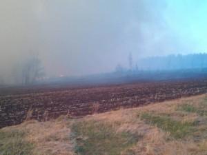 Лесные пожары подступают к Челябинску