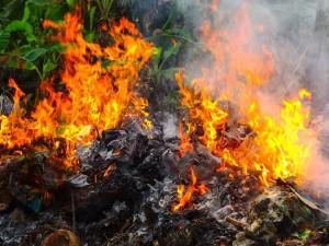 Увеличить штрафы за сжигание мусора и незаконную торговлю предложили депутаты Челябинска