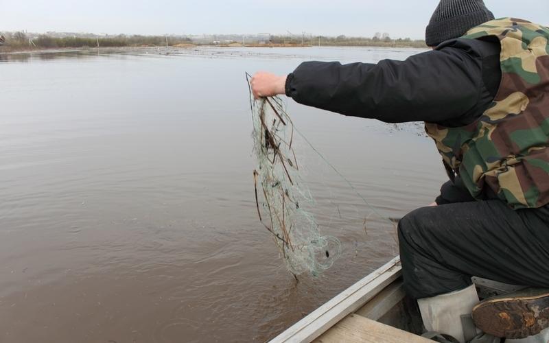 В Брянске изловили рыбаков-браконьеров