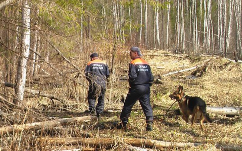 В поисках пропавшего в Погарском районе ребенка участвует уже 170 человек
