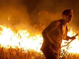 Поджигатель травы попал под уголовное дело