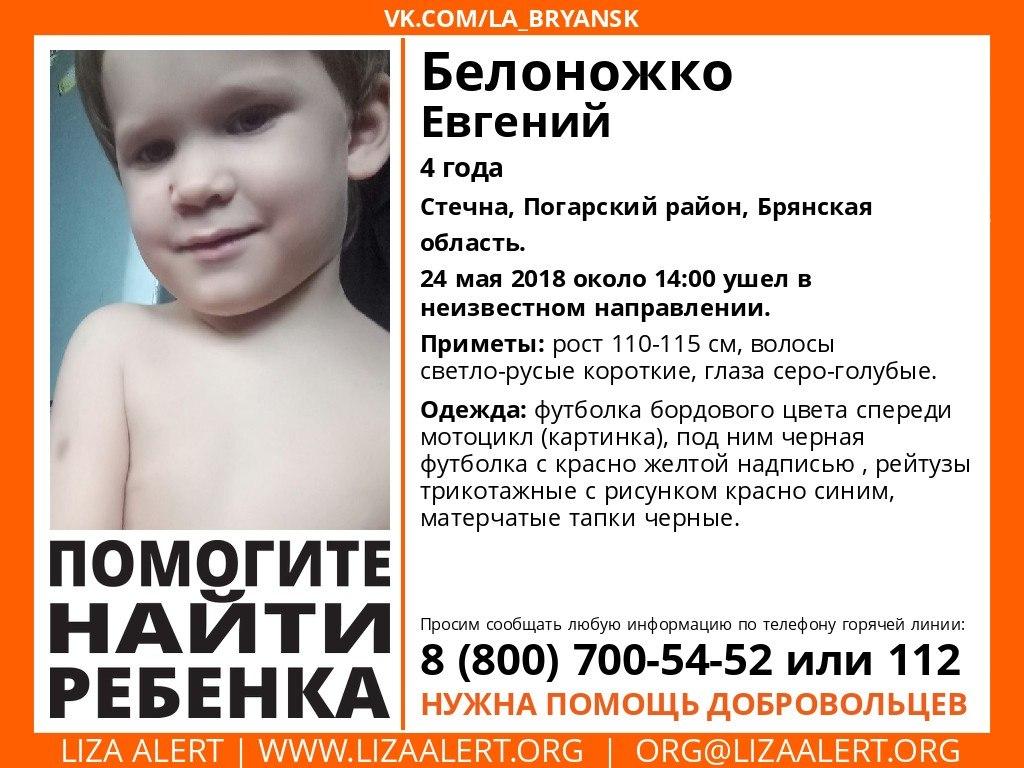 ВБрянской области продолжаются поиски 4-летнего Евгения Белоножко