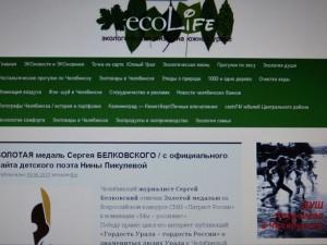 Доменное имя челябинского экологического сайта захватила питерская компания?